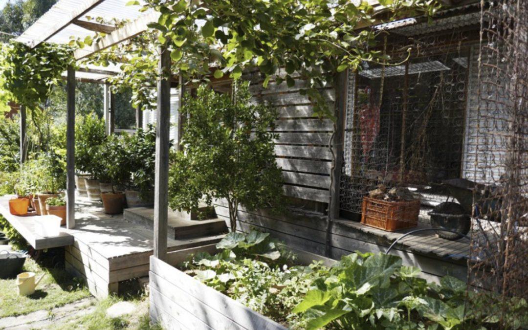Artist as Family house and garden tour
