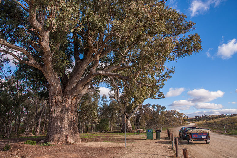 RetroSuburbia Roadshow — Armidale to South Australia